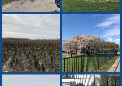 voorjaarsfietstocht